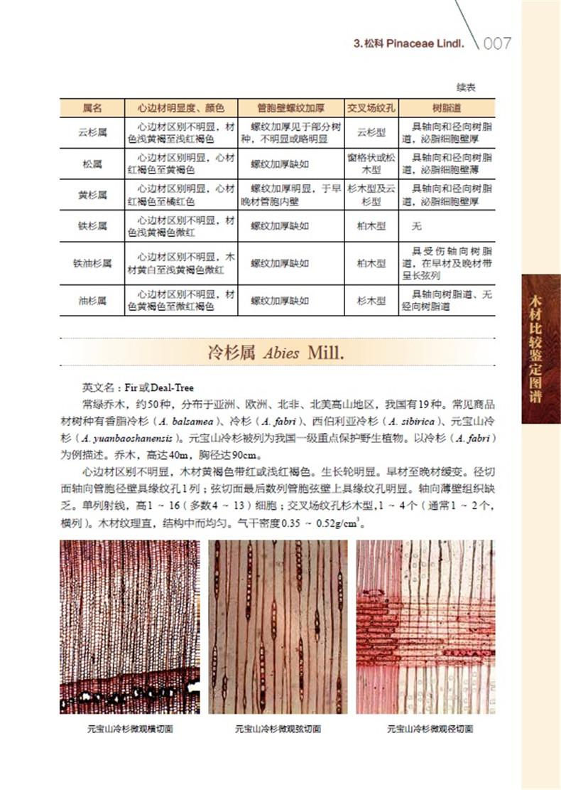 木材比较鉴定图谱