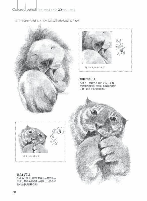 《素描+色铅笔,绘画达人30日速成——动物卷