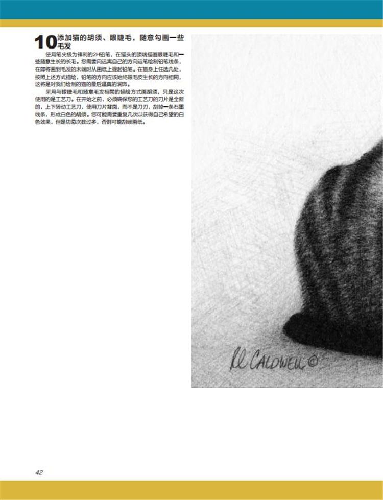 动物素描画法步骤兔子眼睛画法